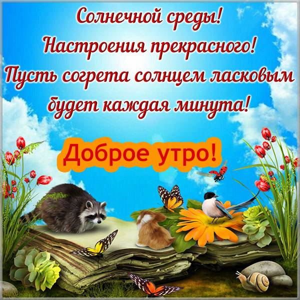 Прикольная картинка на среду с надписью доброе утро - скачать бесплатно на otkrytkivsem.ru