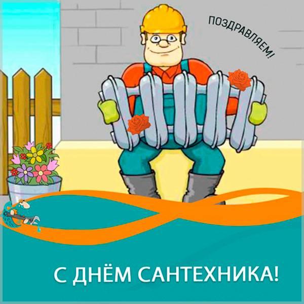 Прикольная картинка на Всемирный день сантехника 19 ноября - скачать бесплатно на otkrytkivsem.ru