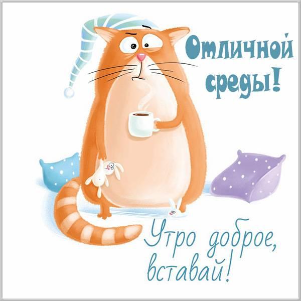 Прикольная картинка отличной среды - скачать бесплатно на otkrytkivsem.ru