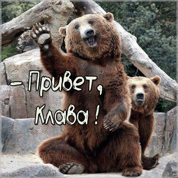 Прикольная картинка привет Клава - скачать бесплатно на otkrytkivsem.ru