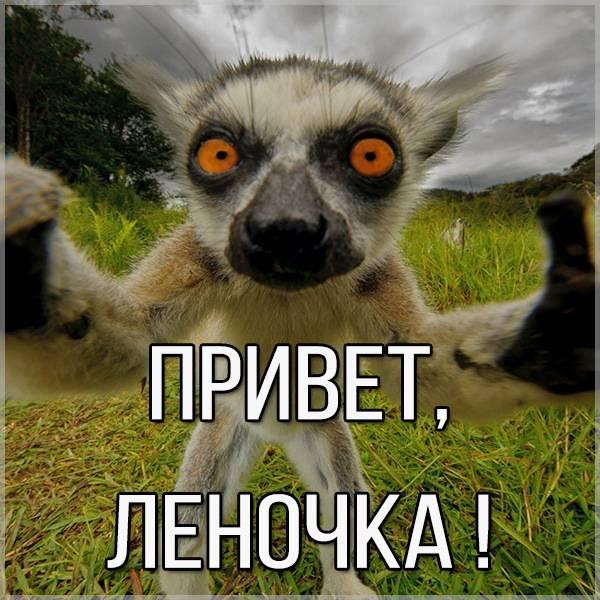 Прикольная картинка привет Леночка - скачать бесплатно на otkrytkivsem.ru