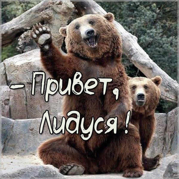 Прикольная картинка привет Лидуся - скачать бесплатно на otkrytkivsem.ru