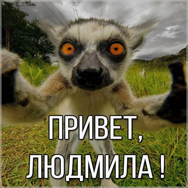 Прикольная картинка привет Людмила - скачать бесплатно на otkrytkivsem.ru