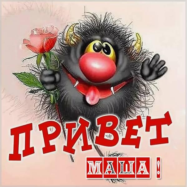 Прикольная картинка привет Маша - скачать бесплатно на otkrytkivsem.ru