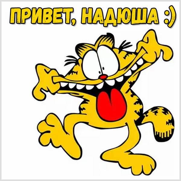 Прикольная картинка привет Надюша - скачать бесплатно на otkrytkivsem.ru