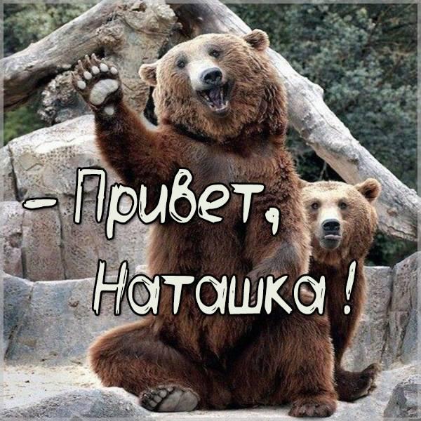 Прикольная картинка привет Наташка - скачать бесплатно на otkrytkivsem.ru