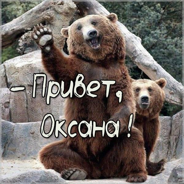 Прикольная картинка привет Оксана - скачать бесплатно на otkrytkivsem.ru