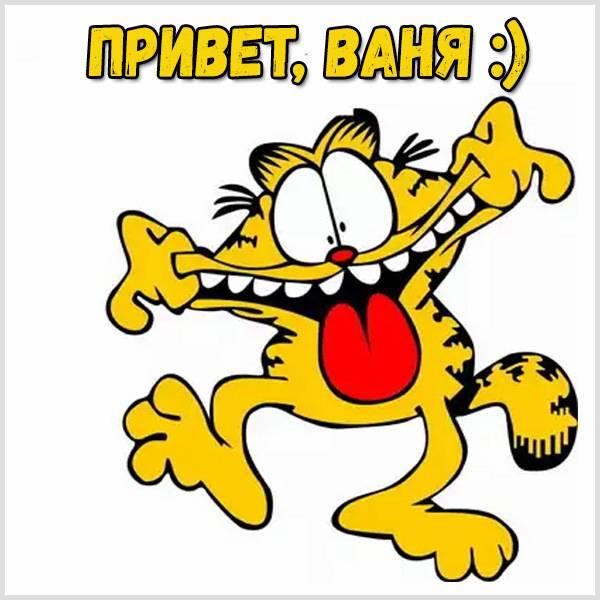 Прикольная картинка привет Ваня - скачать бесплатно на otkrytkivsem.ru