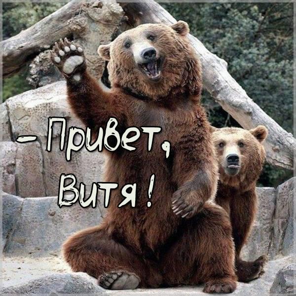 Прикольная картинка привет Витя - скачать бесплатно на otkrytkivsem.ru
