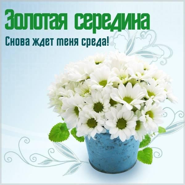Прикольная картинка про реда день недели среду - скачать бесплатно на otkrytkivsem.ru