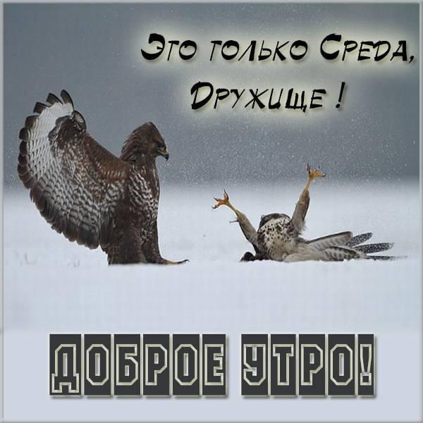 Прикольная картинка про утро среды с надписью - скачать бесплатно на otkrytkivsem.ru