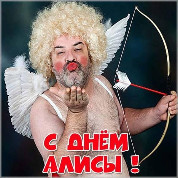 Прикольная картинка с днем Алисы - скачать бесплатно на otkrytkivsem.ru