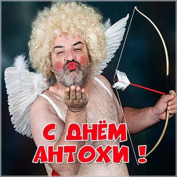 Прикольная картинка с днем Антохи - скачать бесплатно на otkrytkivsem.ru