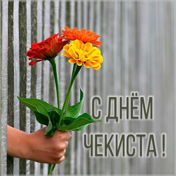 Прикольная картинка с днем чекиста - скачать бесплатно на otkrytkivsem.ru
