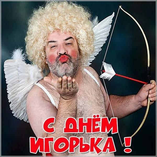 Прикольная картинка с днем Игорька - скачать бесплатно на otkrytkivsem.ru