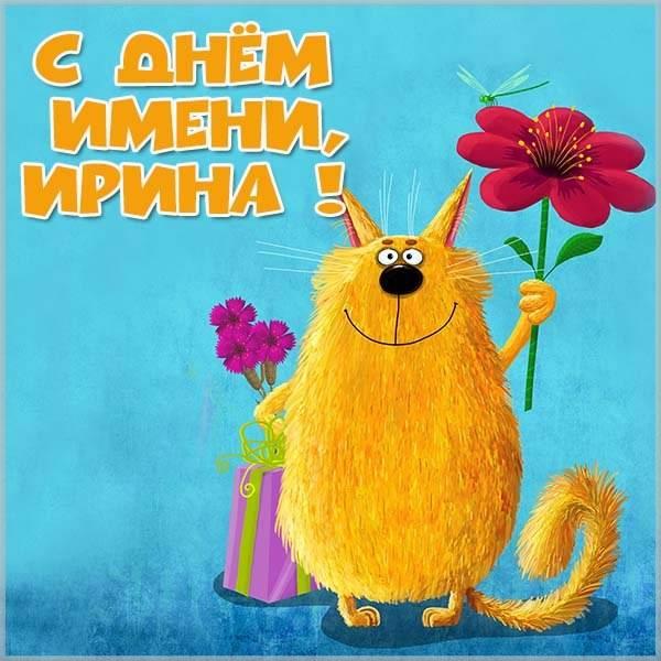Прикольная картинка с днем имени Ирина - скачать бесплатно на otkrytkivsem.ru