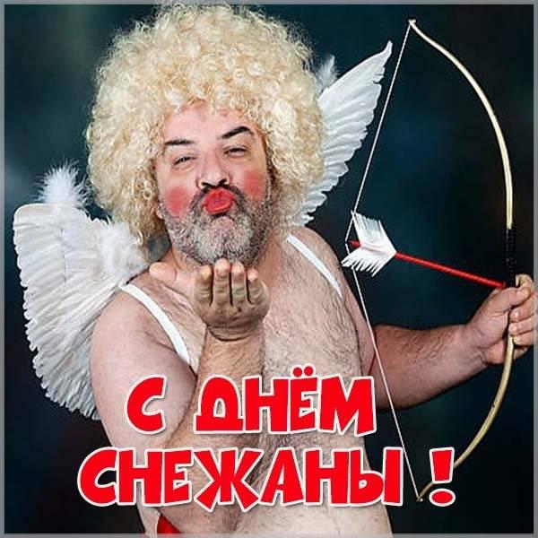 Прикольная картинка с днем Снежаны - скачать бесплатно на otkrytkivsem.ru
