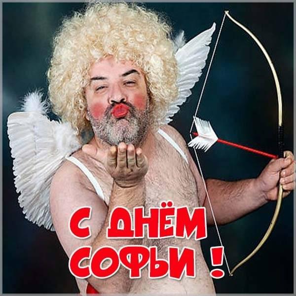 Прикольная картинка с днем Софьи - скачать бесплатно на otkrytkivsem.ru