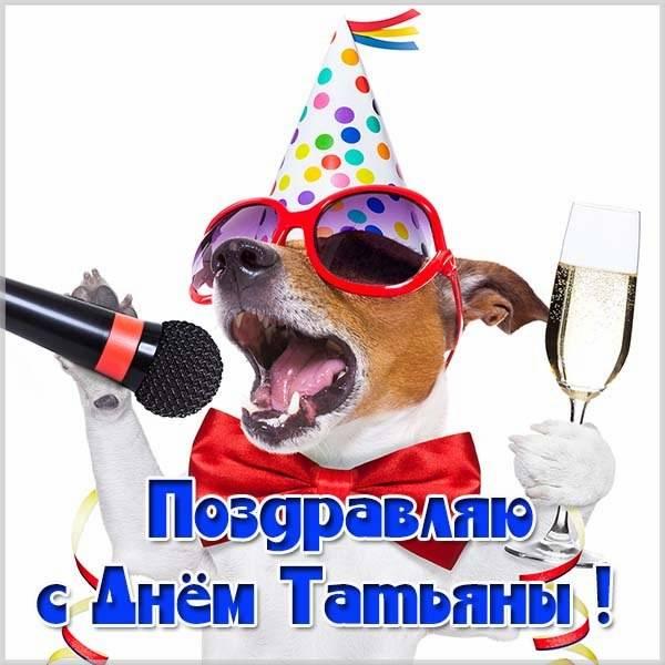 Прикольная картинка с днем Таньки - скачать бесплатно на otkrytkivsem.ru