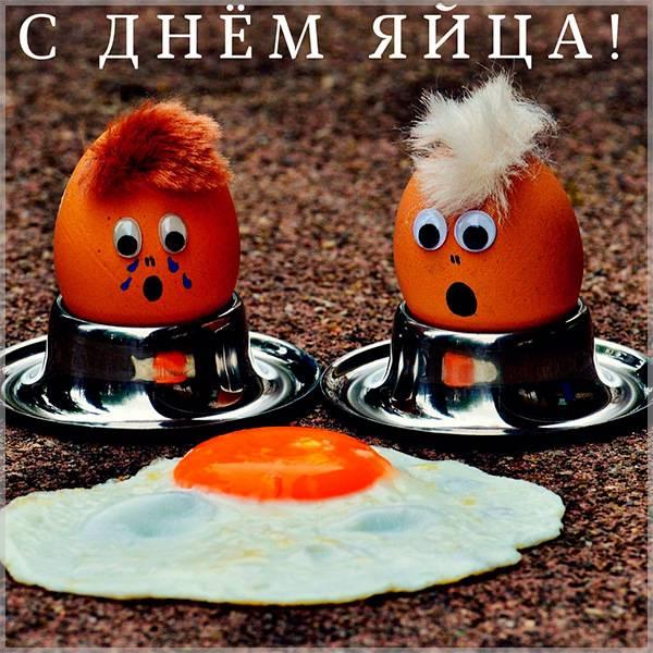 Прикольная картинка с днем яйца - скачать бесплатно на otkrytkivsem.ru