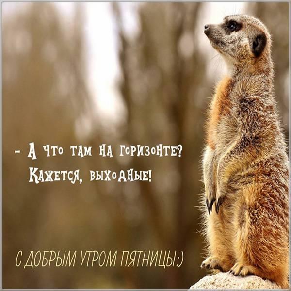 Прикольная картинка с добрым утром пятницы друзьям - скачать бесплатно на otkrytkivsem.ru