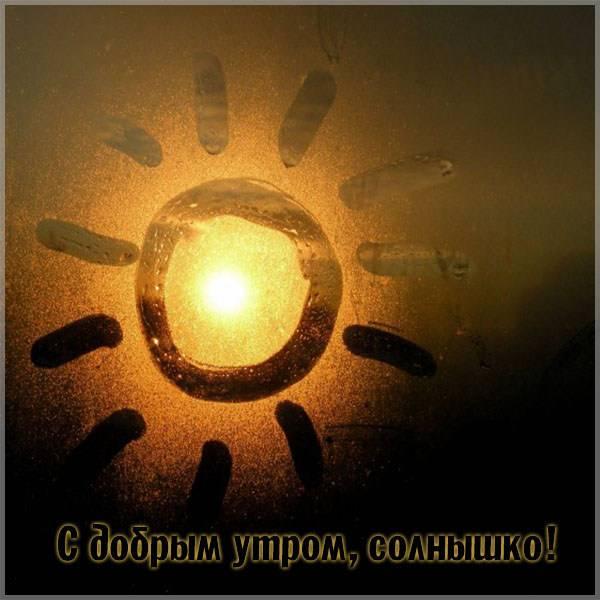 Прикольная картинка с добрым утром солнышко - скачать бесплатно на otkrytkivsem.ru