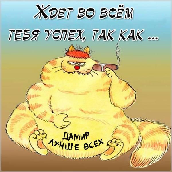 Прикольная картинка с надписью Дамир - скачать бесплатно на otkrytkivsem.ru