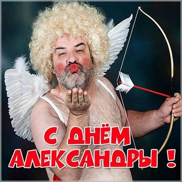Прикольная картинка с поздравлением с днем Александры - скачать бесплатно на otkrytkivsem.ru