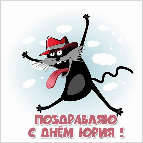 Прикольная картинка с поздравлением с днем Юрия - скачать бесплатно на otkrytkivsem.ru