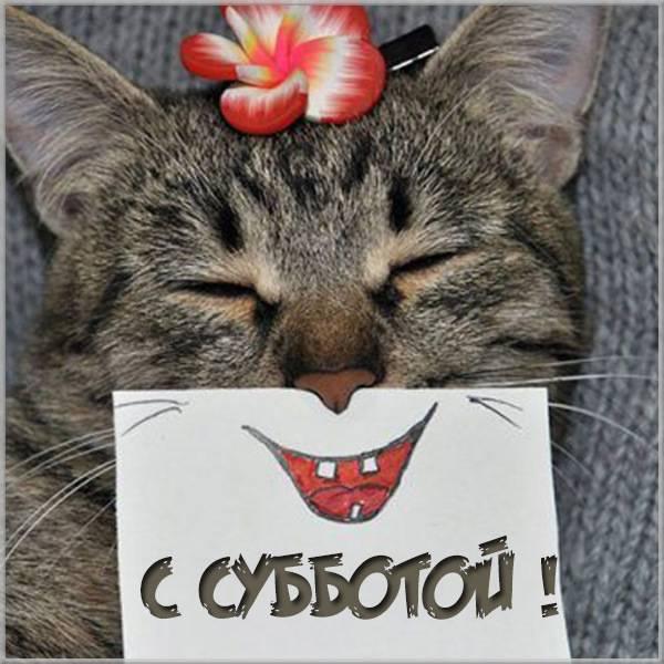 Прикольная картинка с субботой - скачать бесплатно на otkrytkivsem.ru