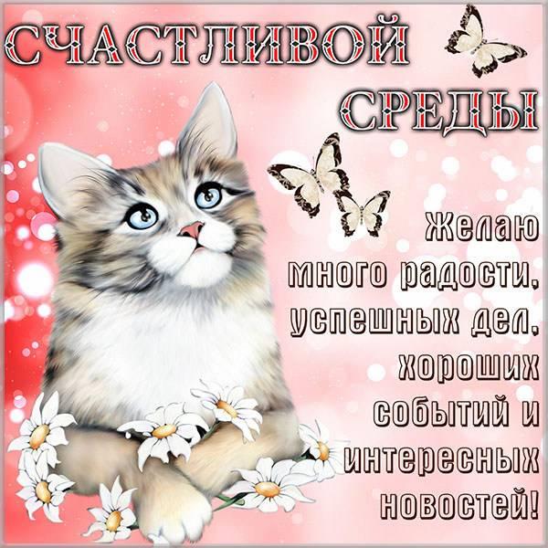 Прикольная картинка счастливой среды - скачать бесплатно на otkrytkivsem.ru