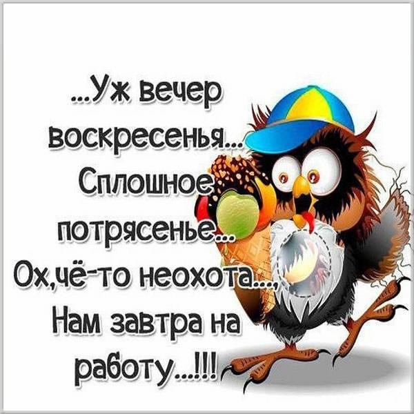 Прикольная картинка сегодня воскресенье а завтра понедельник - скачать бесплатно на otkrytkivsem.ru