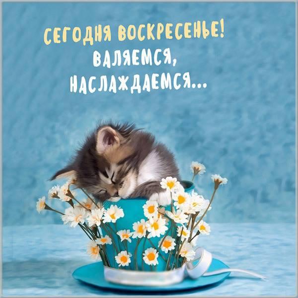 Прикольная картинка сегодня воскресенье - скачать бесплатно на otkrytkivsem.ru