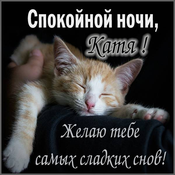 Прикольная картинка спокойной ночи Катя - скачать бесплатно на otkrytkivsem.ru