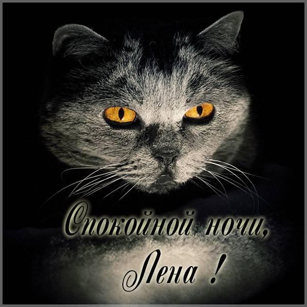 Прикольная картинка спокойной ночи Лена - скачать бесплатно на otkrytkivsem.ru
