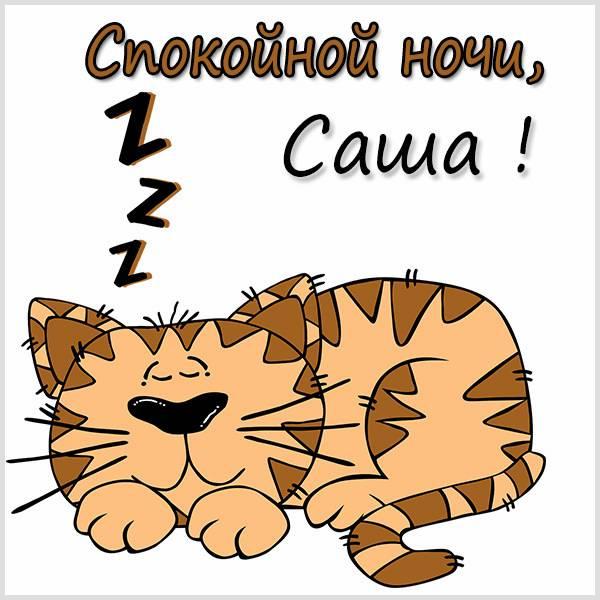 Прикольная картинка спокойной ночи Саша - скачать бесплатно на otkrytkivsem.ru