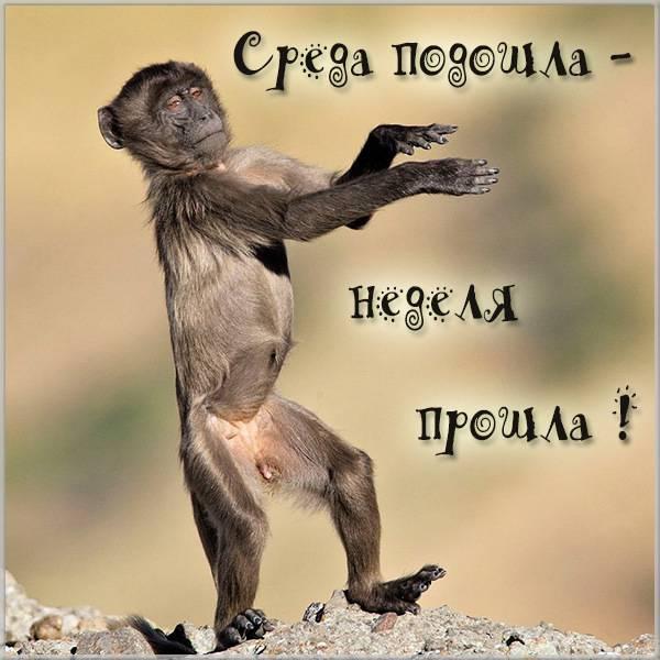 Прикольная картинка среда подошла неделя прошла - скачать бесплатно на otkrytkivsem.ru