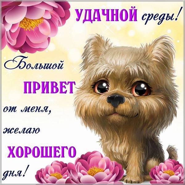Прикольная картинка удачной среды - скачать бесплатно на otkrytkivsem.ru
