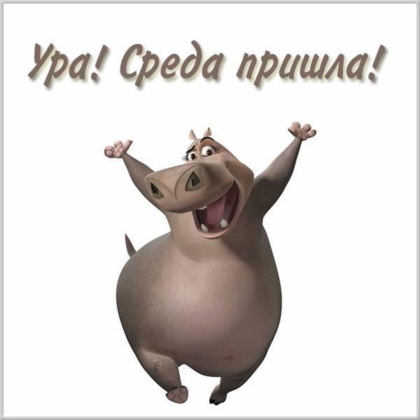 Прикольная картинка ура среда - скачать бесплатно на otkrytkivsem.ru