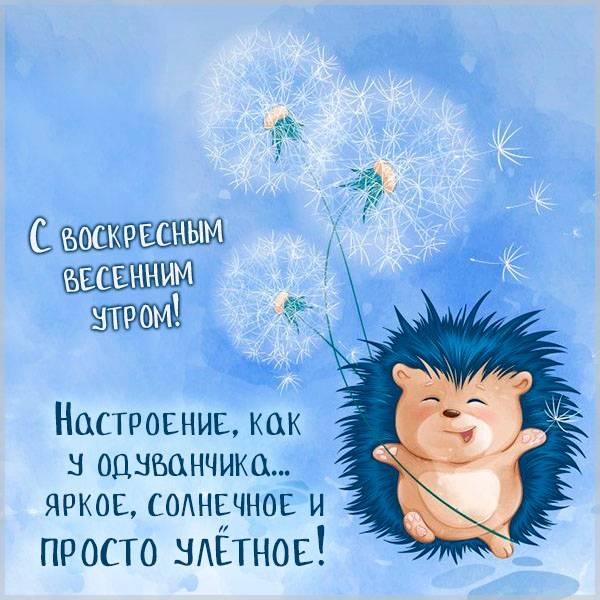 Прикольная картинка воскресного весеннего утра - скачать бесплатно на otkrytkivsem.ru