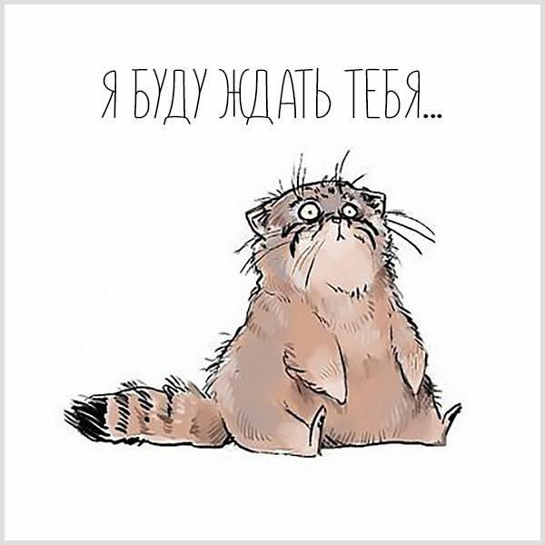 Прикольная картинка я буду ждать тебя - скачать бесплатно на otkrytkivsem.ru