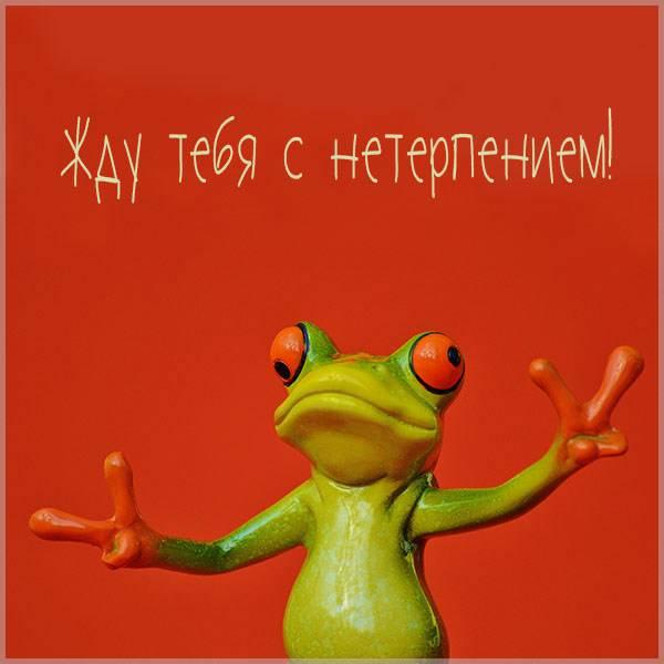 Прикольная картинка жду тебя с нетерпением - скачать бесплатно на otkrytkivsem.ru