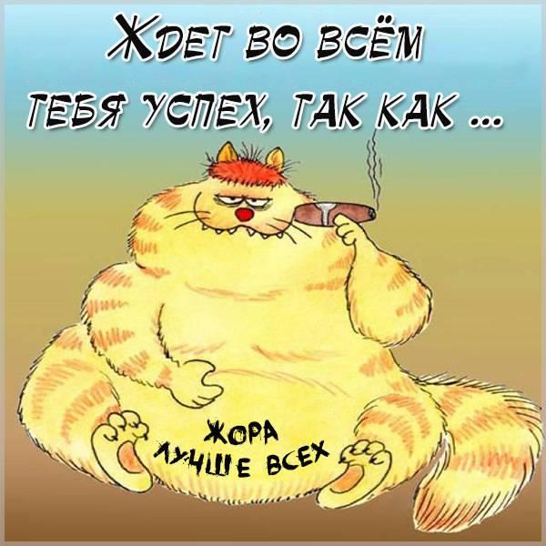 Прикольная картинка Жоре - скачать бесплатно на otkrytkivsem.ru