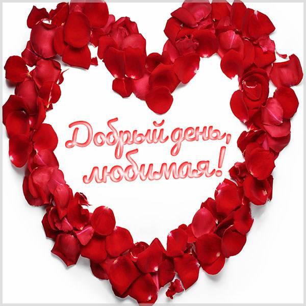 Прикольная открытка добрый день любимая - скачать бесплатно на otkrytkivsem.ru