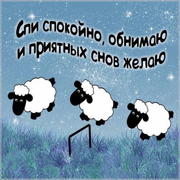Прикольная открытка мужу спокойной ночи - скачать бесплатно на otkrytkivsem.ru