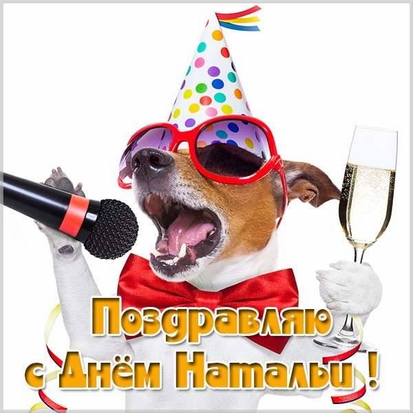 Прикольная открытка на день Натальи с поздравлением - скачать бесплатно на otkrytkivsem.ru