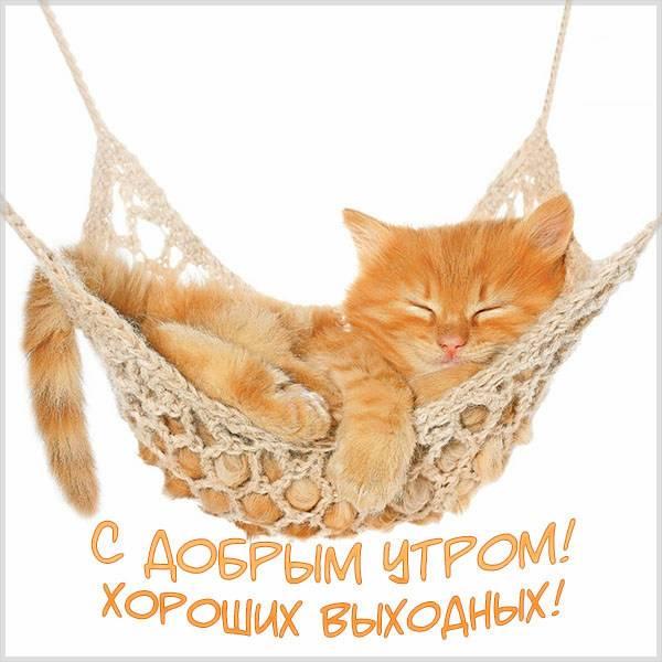 Прикольная открытка с добрым утром хороших выходных - скачать бесплатно на otkrytkivsem.ru