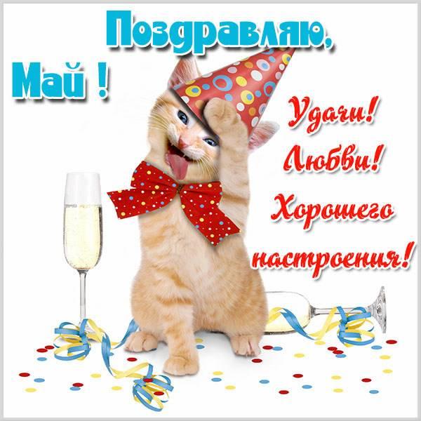 Прикольная открытка с поздравлением Маю - скачать бесплатно на otkrytkivsem.ru