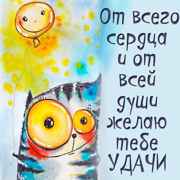 Прикольная открытка с пожеланием удачи тебе - скачать бесплатно на otkrytkivsem.ru