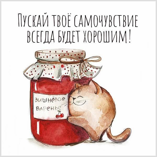 Прикольная открытка с пожеланием здоровья - скачать бесплатно на otkrytkivsem.ru